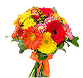 Colorful Gerberas and Roses