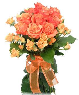 Slike vašeg omiljenog cveća Jes-ruze
